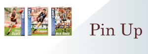 AFL VFL pin up, memorabilia, collectables, footy hero