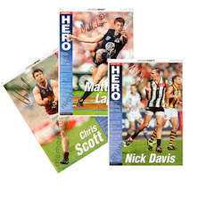 VFL Memorabilia / AFL Collectables / Pin Up, Footy Hero, Rogers Art